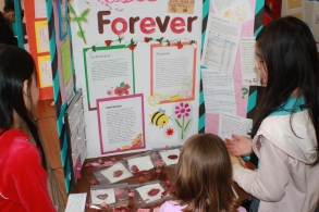 Science Fair 2012 028