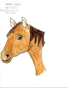 Horse 21