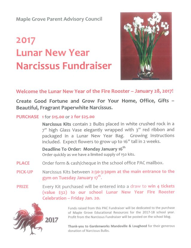 narcissus-fundraiser