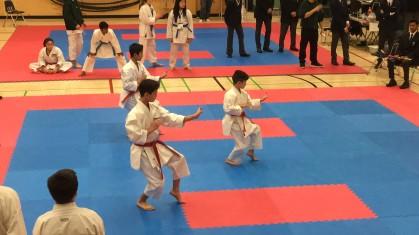 brady karate